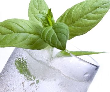 Herbs can be used to temporary stop bad breath.